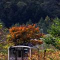 Photos: 深川へ