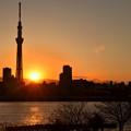 スカイツリー、夕日、富士山