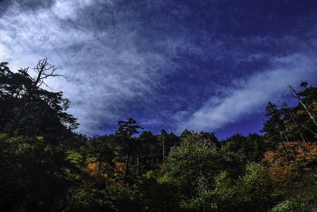 Photos: 秋天2
