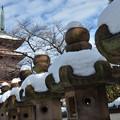 上野寛永寺雪景