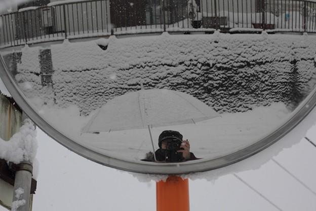 雪+masa