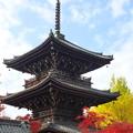 2010.11 京都