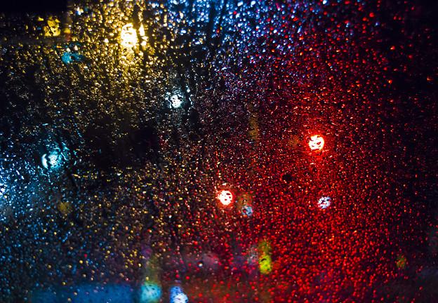 雨粒の宝石