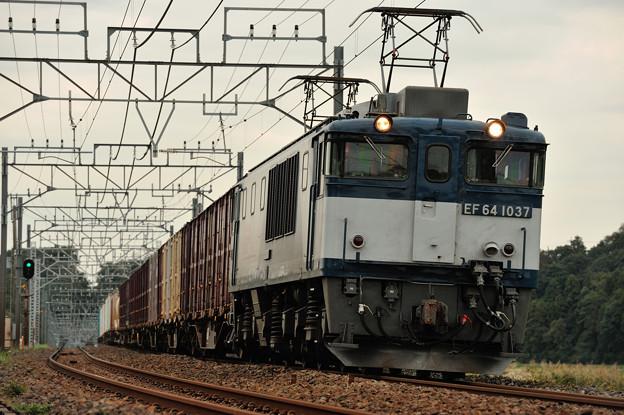 EF641037牽引鹿島貨物76レ