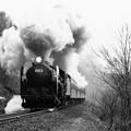 Photos: 蒸気機関車C62 稲穂峠を駆ける