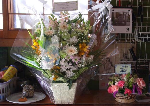 めおにお花を頂きました。
