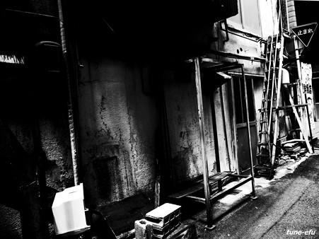 大黒市場2012夏#2