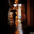 Photos: 熊本は雨