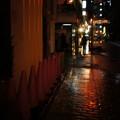 Photos: 熊本は雨#2