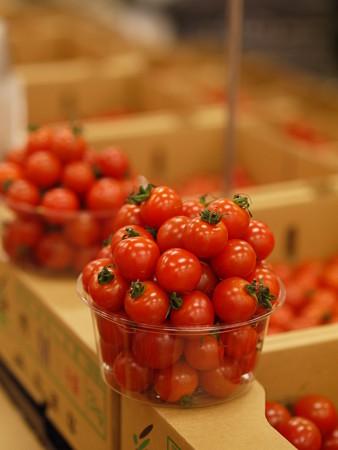 トマトを詰め詰め
