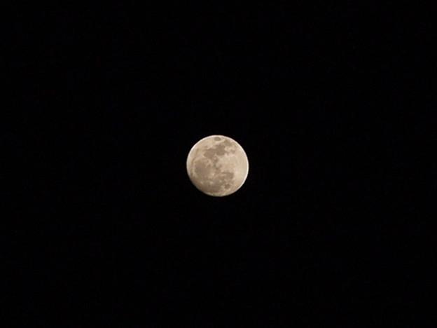 月・初撮影