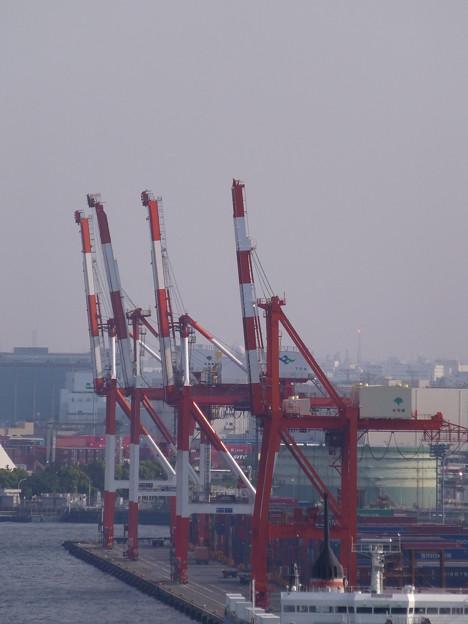 港の「キリン」