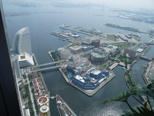 横浜港の朝