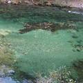 Photos: 美しい舘岩川