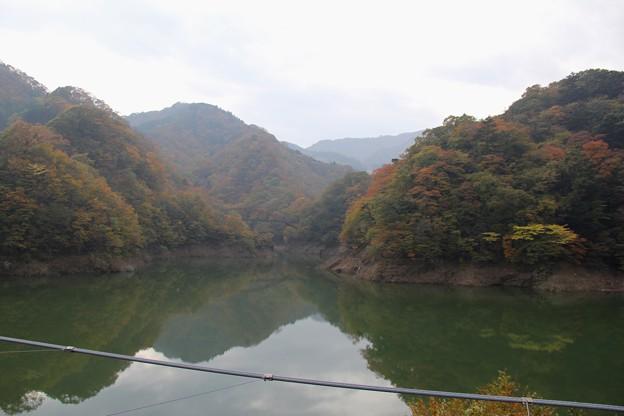 Photos: もみじ橋大吊橋からの眺め(2013/11/3)