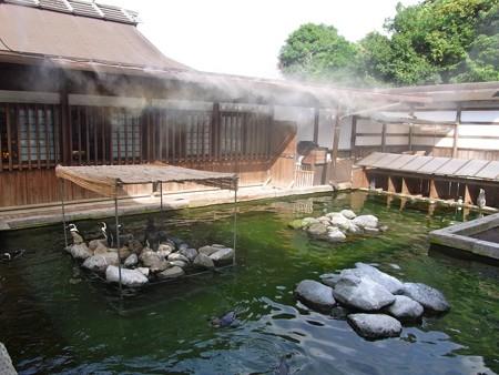 20120908 掛川 こどもたち01