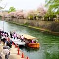 20130406 京都 琵琶湖疎水02