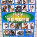 20130905 京都動 ポスター