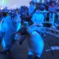 Photos: 20131208 海遊館 イルミキング06