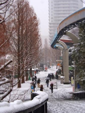 20130208 上野 雪の上野動物園01