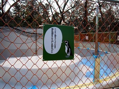 20140309 井の頭 ペンギンプール03