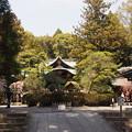 Photos: 岡崎神社