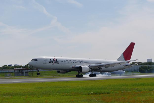 アークの翼も日本の空で!