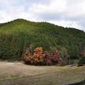 写真: 芝生古墳遠景