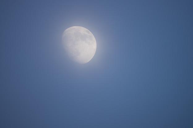 白さを取り戻した月