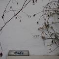 Photos: 白壁のCafe