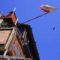 Photos: 35 FLAG