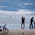 Photos: 38浜辺のお散歩