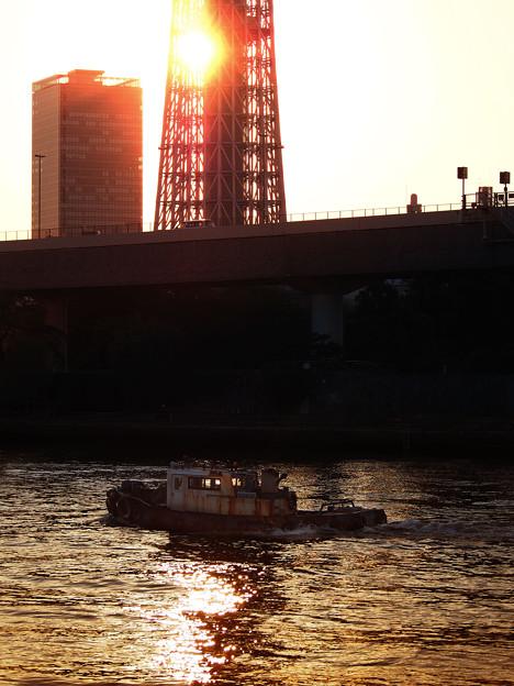 Photos: 2920_朝日の隅田川