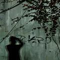 Photos: 夜の壁