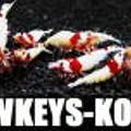 20130103 Lowkeys-KOBE