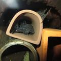 Photos: 20130301 45cmプレコ水槽のファンシースポットペコルティア