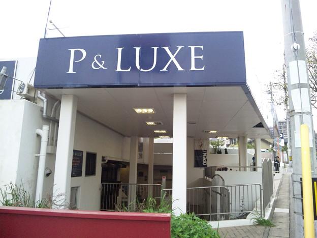 20130417 P&LUXE ペットショップ