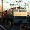 写真: EF65-501&DD51-842&旧客