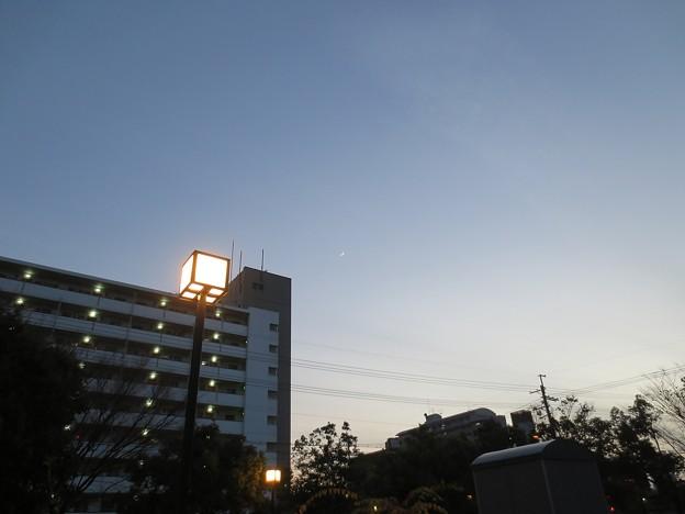 Photos: クレセントムーンII