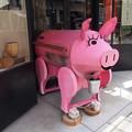 ピンクの豚^^