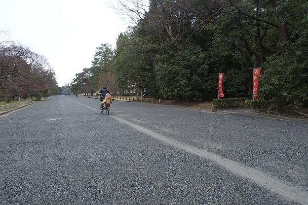 Photos: 一本道