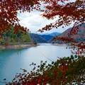 写真: 紅葉を探しに4