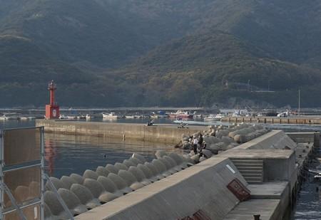 御津港 釣り人