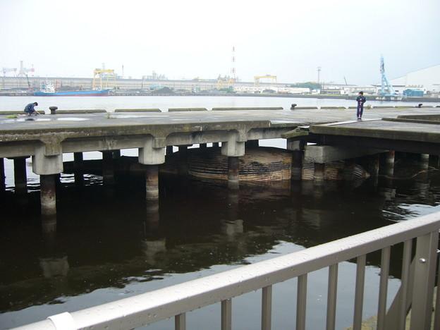 Photos: 漂着したクジラの亡骸