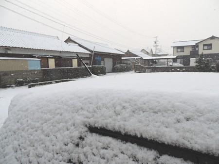 雪が積もりました。