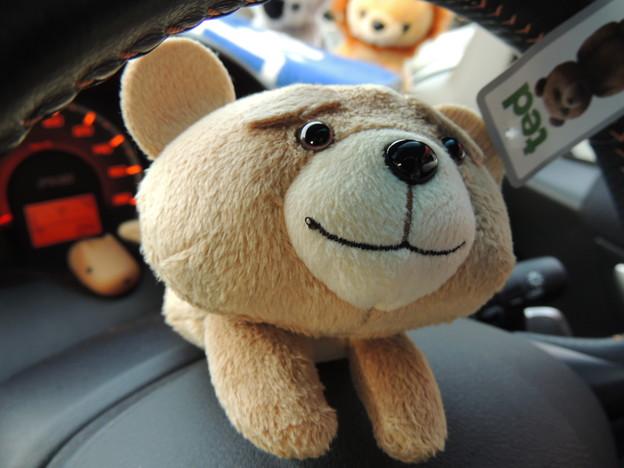 TEDのペンケース。