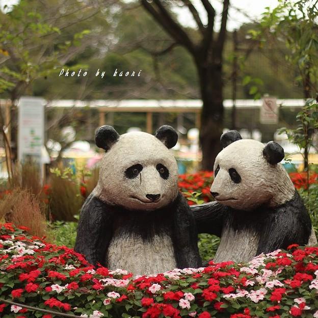 LOVE!KICHIJOJI