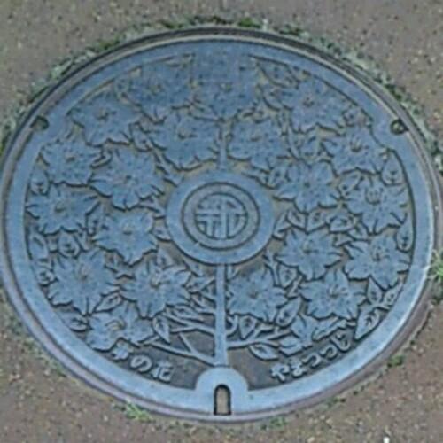 新井市(現・妙高市)