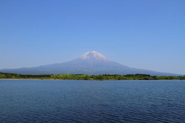 田貫湖の別の場所から。
