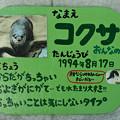 写真: tokusima120803002